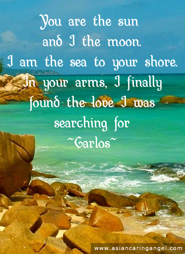 CARLOS' LOVE POEMS_You arre the sun and I the moon