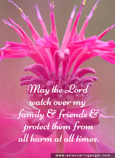 150817_8_ACA'S QUOTES AND POEMS_FAMILY & FRIENDSHIP_May the Lord watch over my family and friends