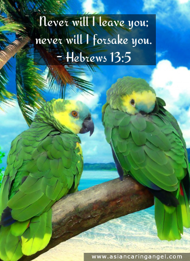 150819_5_ACA'S QUOTES AND POEMS_BIBLE VERSES & CHRISTIANITY_Never will I leave you Never will I forsake you