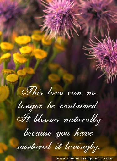 150820_10_ACA'S QUOTES AND POEMS_LOVE_This love can no longer be contained It blooms naturally